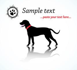 Black Dog Illustration Vector