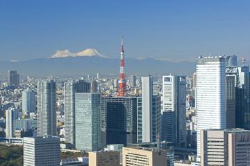 東京市街と富士山展望