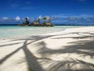 Lovely palm tree shadows on white sand beach