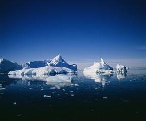 Poster Antarctica 南極