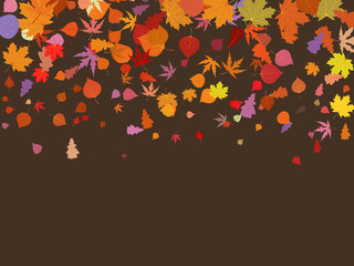 Falling multicolor autumn leaves. EPS 8