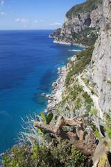 Capri Island shoreline, Italy