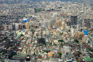 Tokyo Aerial View of Urban Sprawl