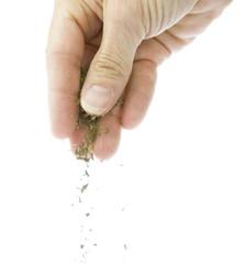 sprinkling herbs