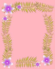 soft pink frame