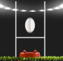 Wall Mural - Rygby ball kicked to the posts