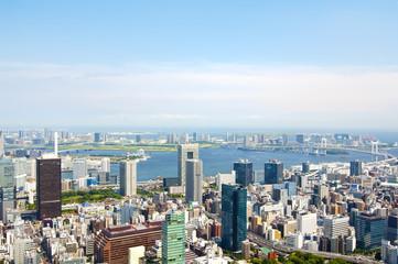 Vista desde la Torre de Tokio