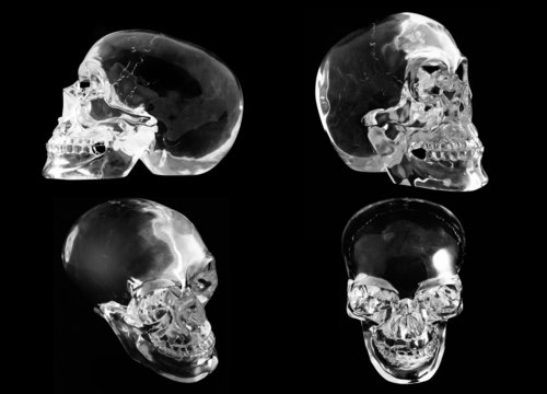 4 views of a crystal skull