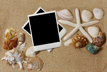 shells with sand and paper
