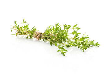Thyme isolated.