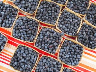 Organic blue berries for sale at market.