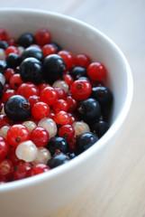 Bol de Fruits des Bois (fruits rouges groseilles cassis baies)