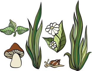 set of plants isolated on white background