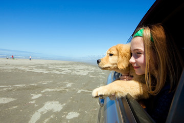 kid and puppy looking out window of a moving car