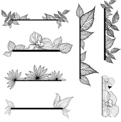 Vector set of vintage design elements with leafs