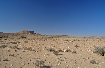 Grand Sud Tunisie,  désert de pierre, Sahara