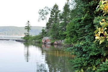 静かな湖の岸部