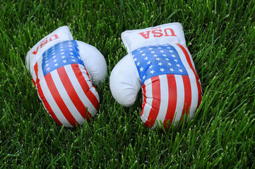 Boxing Gloves with US Flag Image on the Lawn
