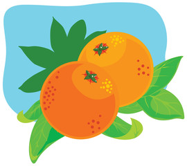 Orange fruit plant
