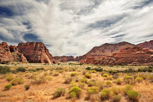 Red Canyon at Snow Canyon, Utah
