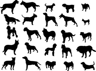 dogs silhouette collection - vector