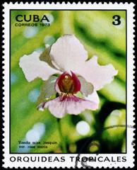 CUBA - CIRCA 1973 Vanda