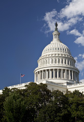 Wall Mural - American Capitol Building, Washington