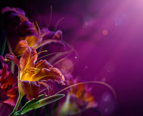 abstract floral background.With copy-space