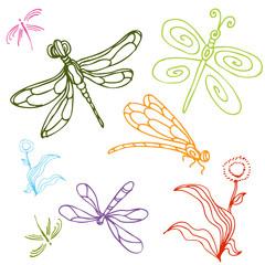 Dragonfly Drawing Set