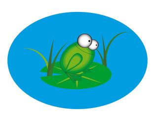 Animation frog