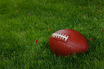 Wet football on the grass