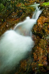 Closeup waterfall in deep forest