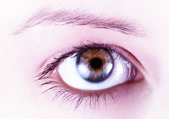 Ein offenes Auge