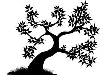curvy tree black