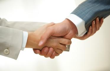 Handshake of partners