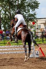 Competitions on concours - the woman jumps through a barrier