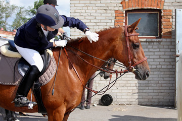 Equestrian sport - the horseman thanks the horse