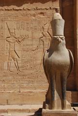 Edfu temple - Horus