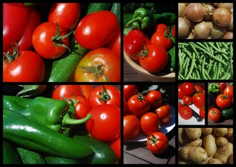 """""""Taste of Summer"""" Collage (vegetables tomato courgette ripe)"""