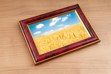 Wheat field in the picture frame