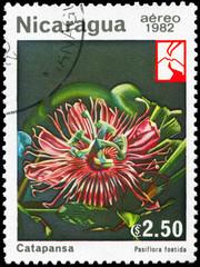 NICARAGUA - CIRCA 1982 Passiflora