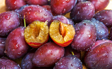 Zwetschgen-Prunus domestica