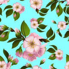 Seamless pattern with apple-tree flowers