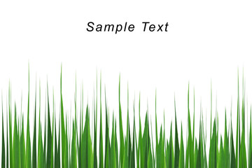 grass isolate