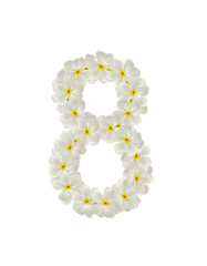 Numbers eight made of tropical flowers frangipani(plumeria) isol
