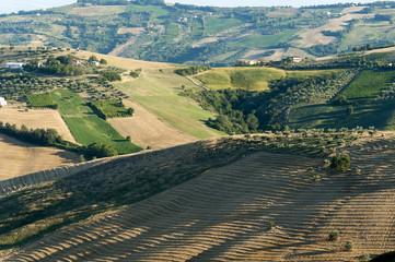 Atri Natural Park (Abruzzi, Italy), landscape at summer