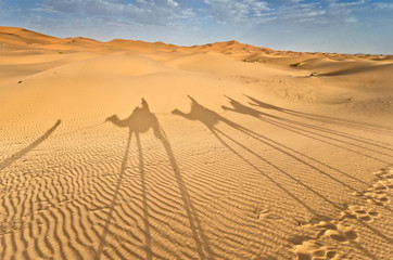 Morocco, Shadow of a camels caravan on the dune