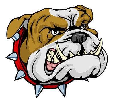 Mean bulldog mascot illustration