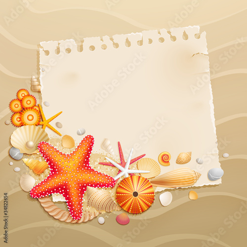 Wall mural Vintage greeting card with shells
