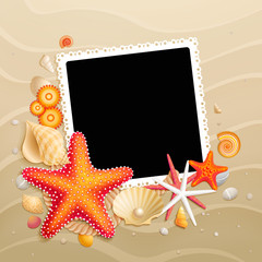 Wall Mural - Picture, shells and starfishes on sand background